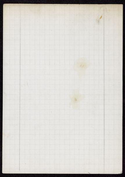 Alice Savy Blank card